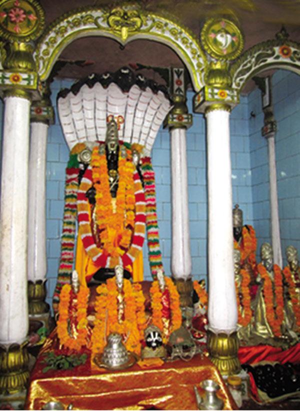 Aradhyadeva venkatesa the glory of God